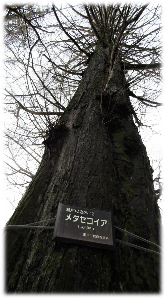 f:id:owari-nagoya55:20200403221731j:plain