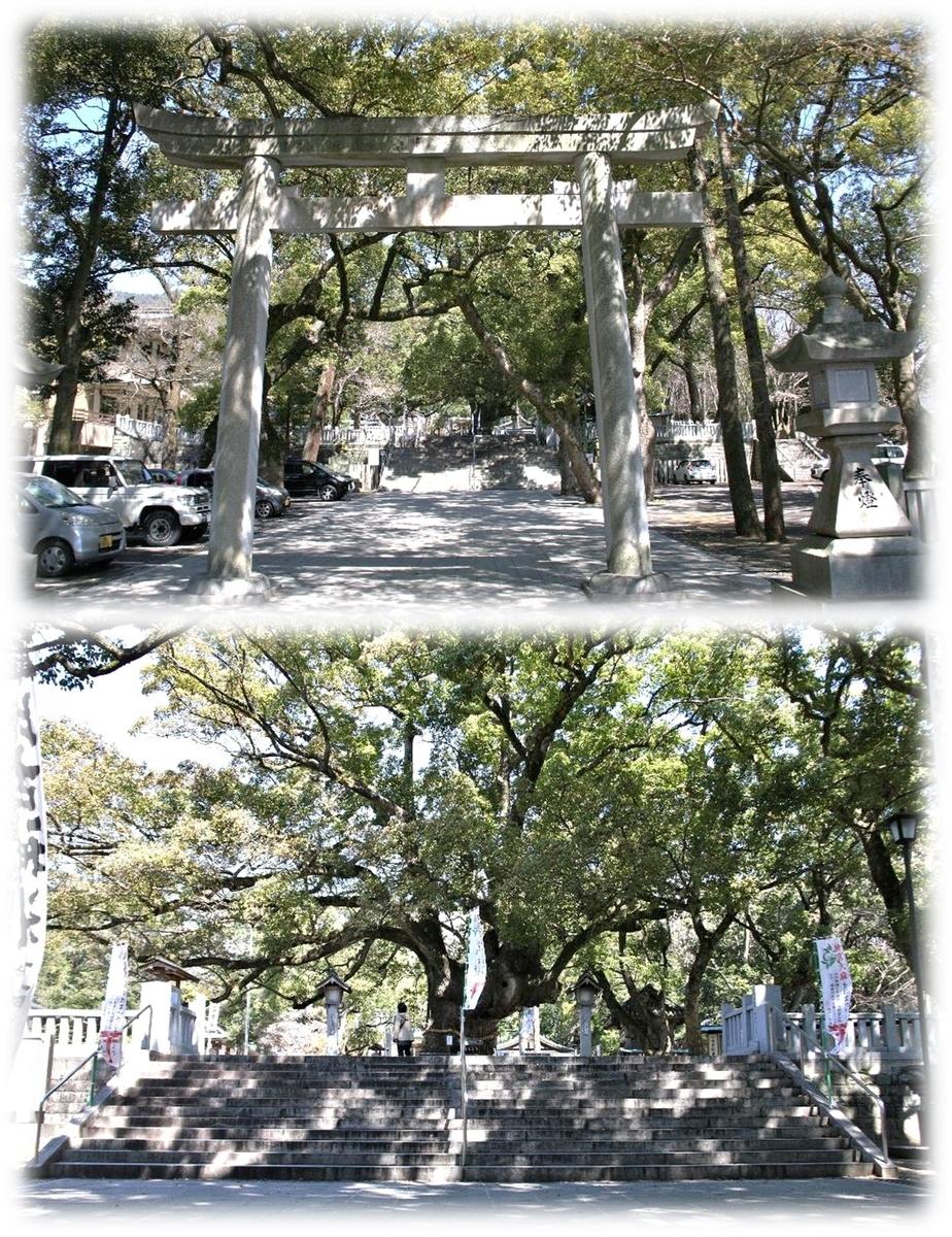 f:id:owari-nagoya55:20200509184810j:plain
