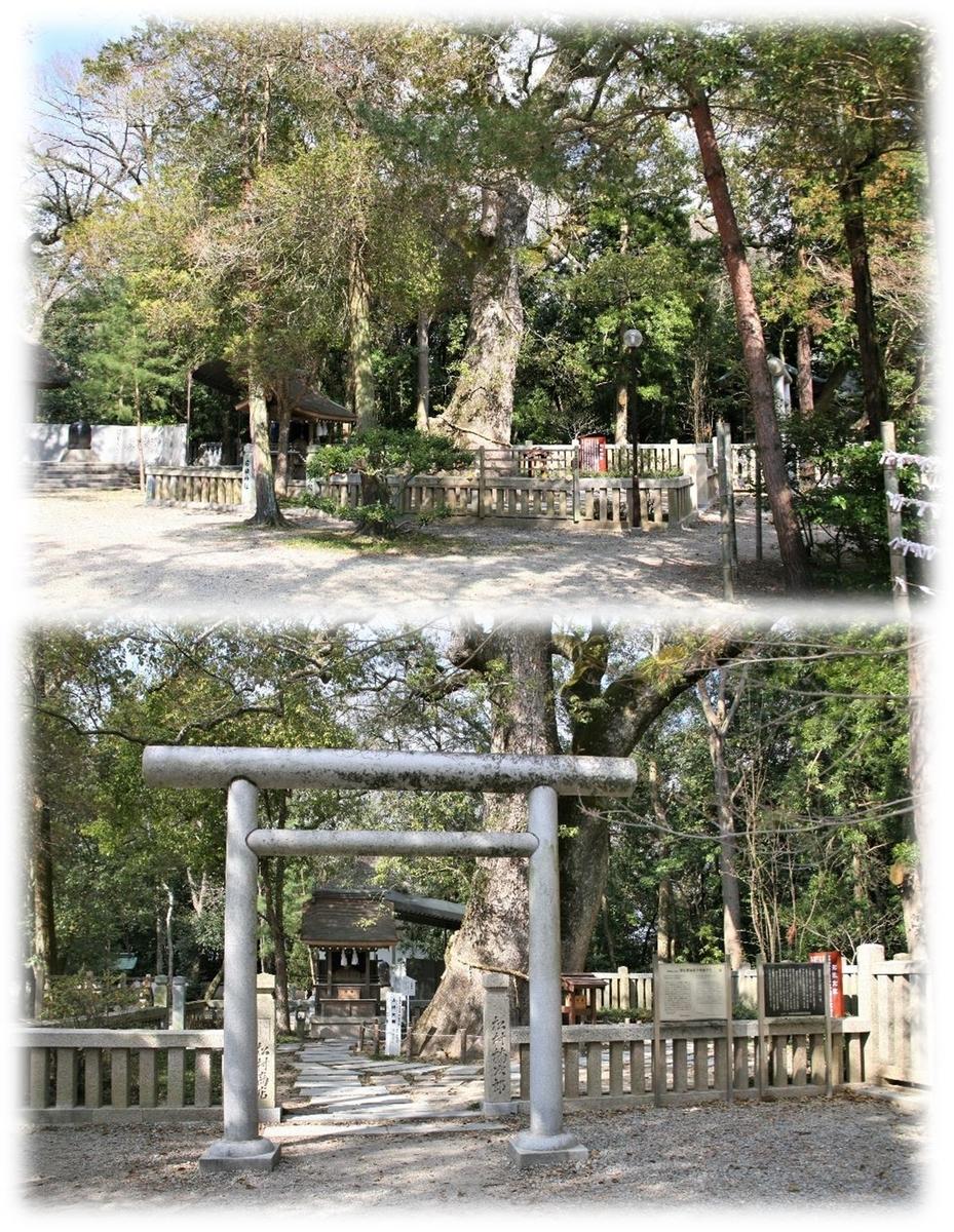 f:id:owari-nagoya55:20200524181338j:plain