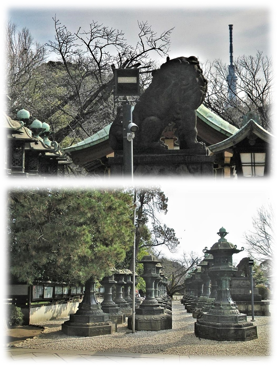 f:id:owari-nagoya55:20200604073555j:plain