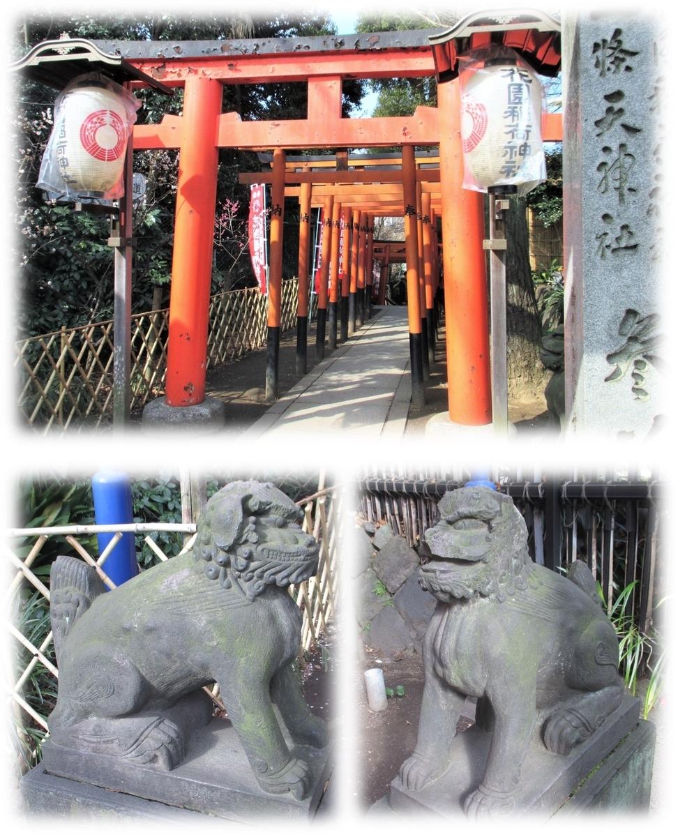 f:id:owari-nagoya55:20200614084331j:plain