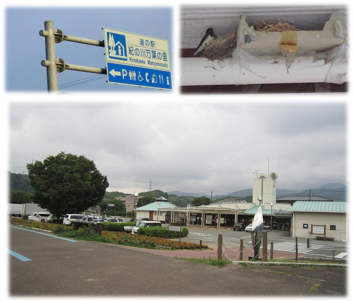f:id:owari-nagoya55:20200628230816j:plain
