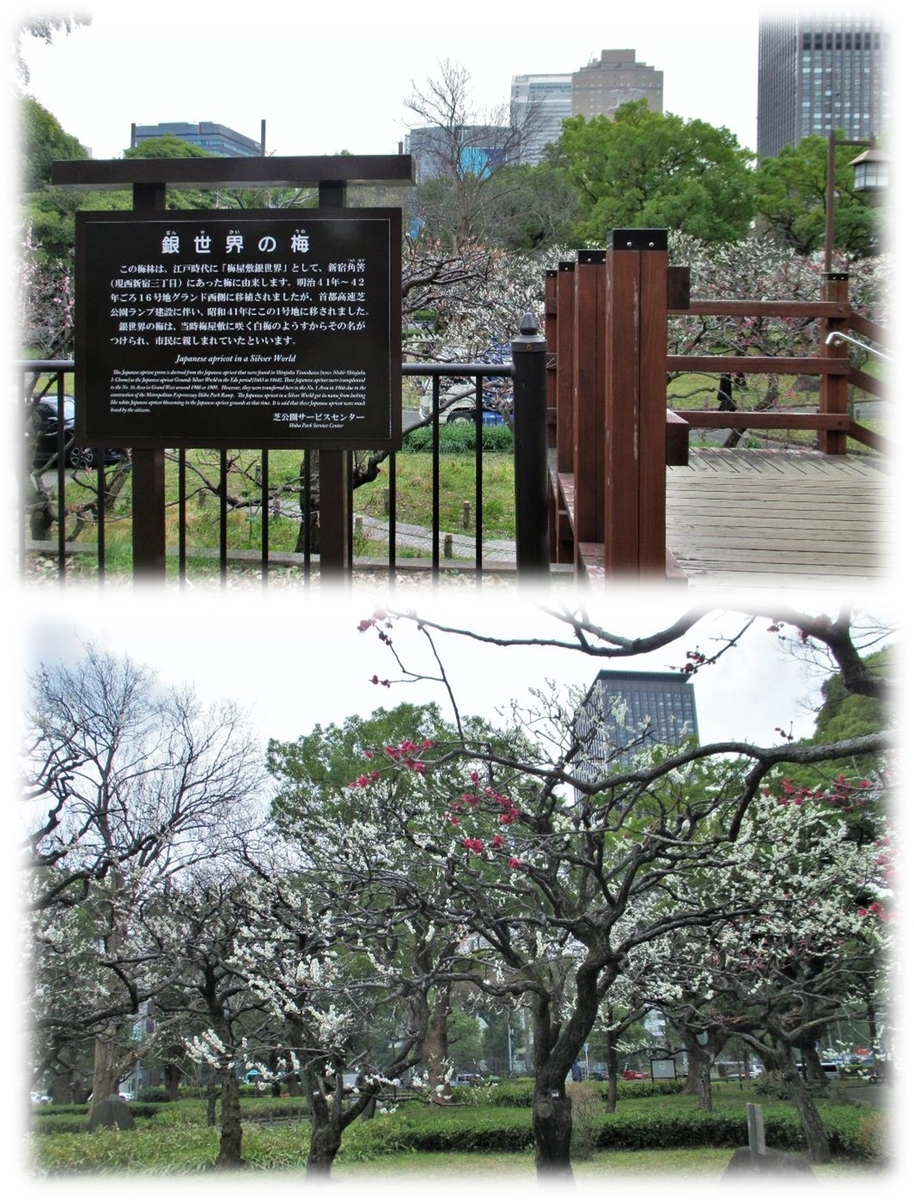 f:id:owari-nagoya55:20200705102419j:plain