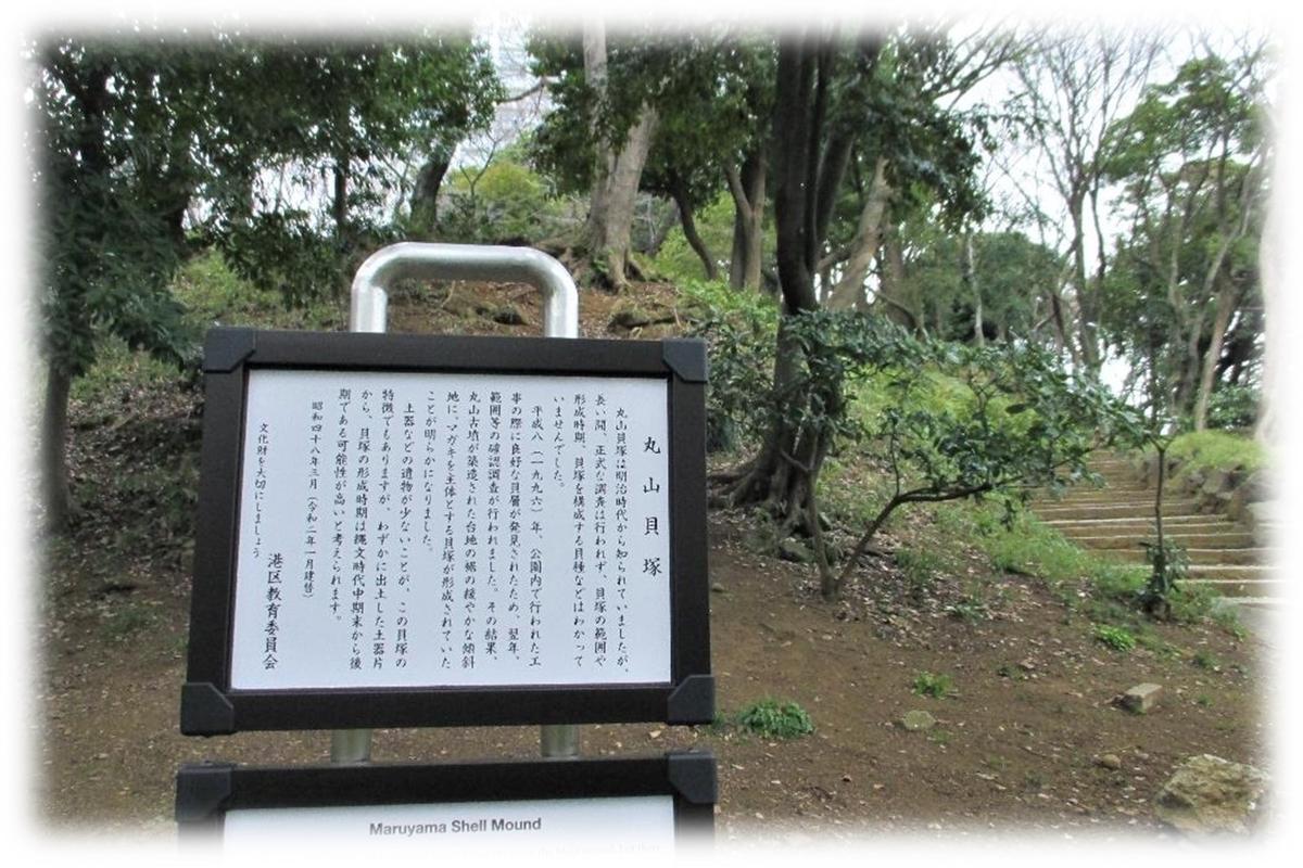 f:id:owari-nagoya55:20200705102442j:plain