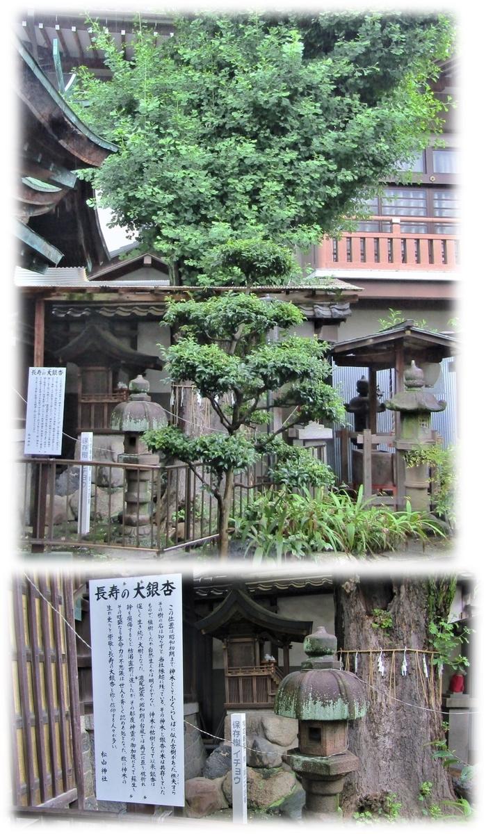 f:id:owari-nagoya55:20200707092859j:plain