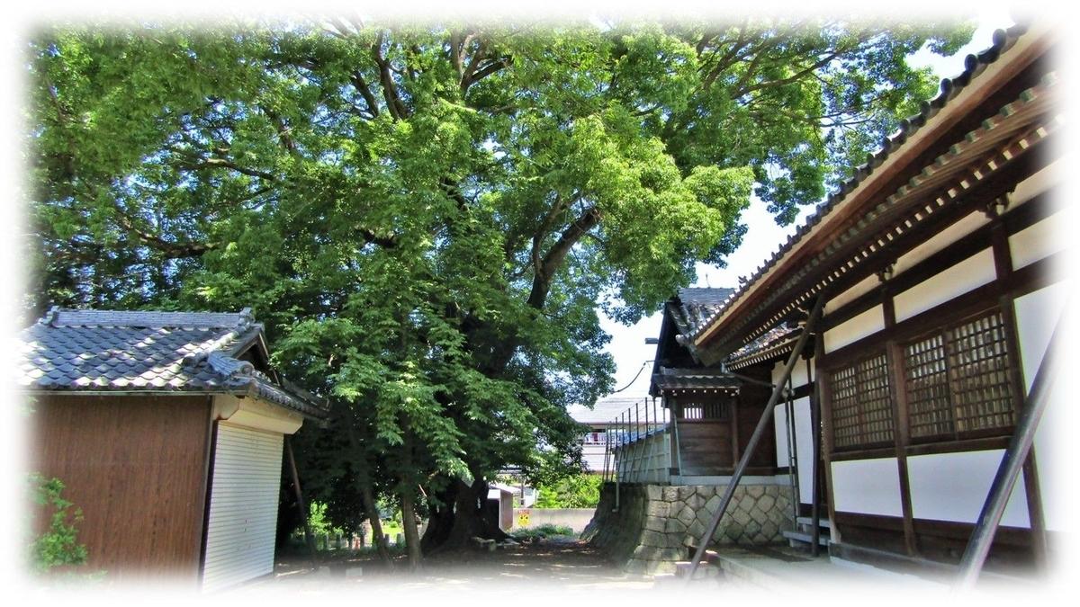 f:id:owari-nagoya55:20200715131022j:plain