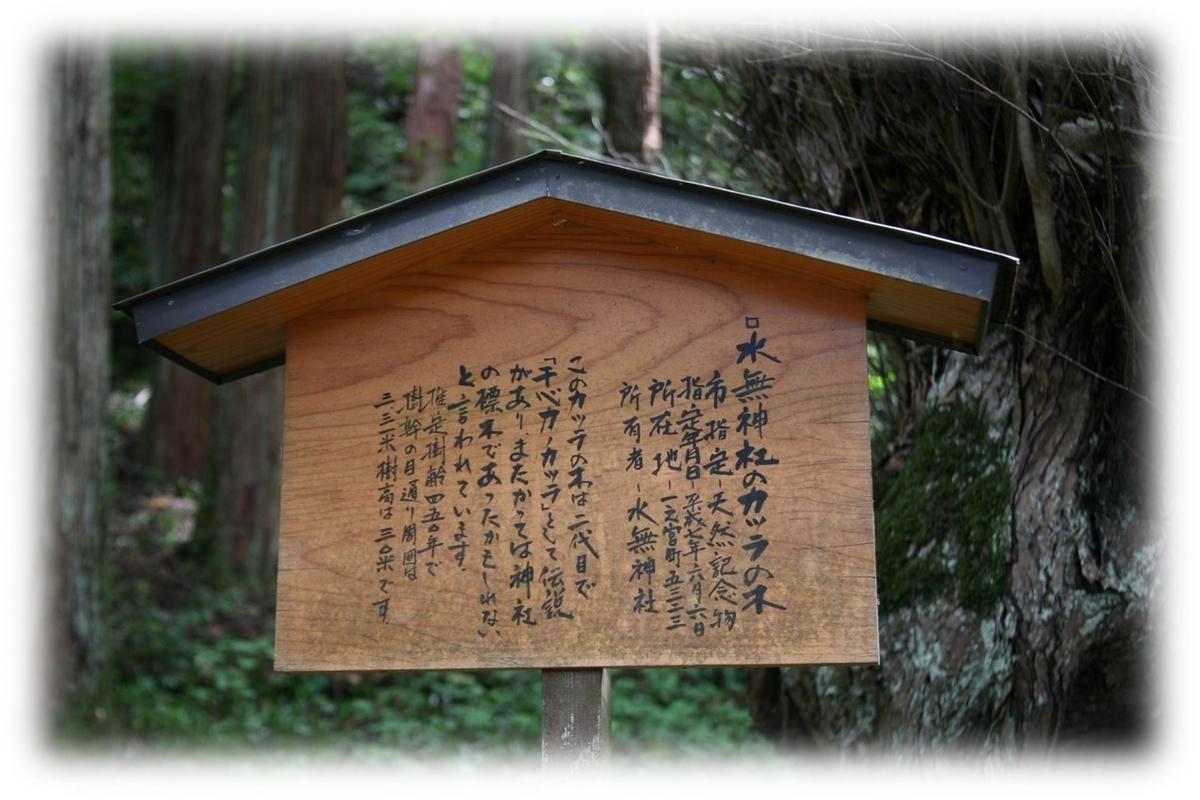 f:id:owari-nagoya55:20201112182312j:plain