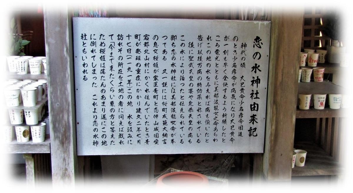 f:id:owari-nagoya55:20201123151354j:plain