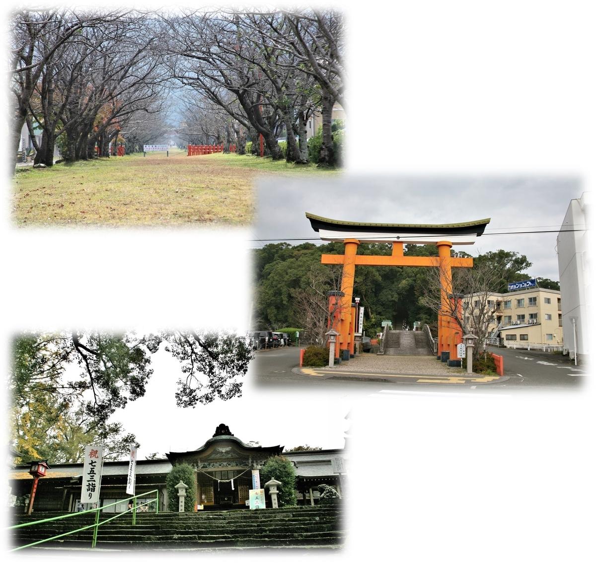 f:id:owari-nagoya55:20201129183719j:plain