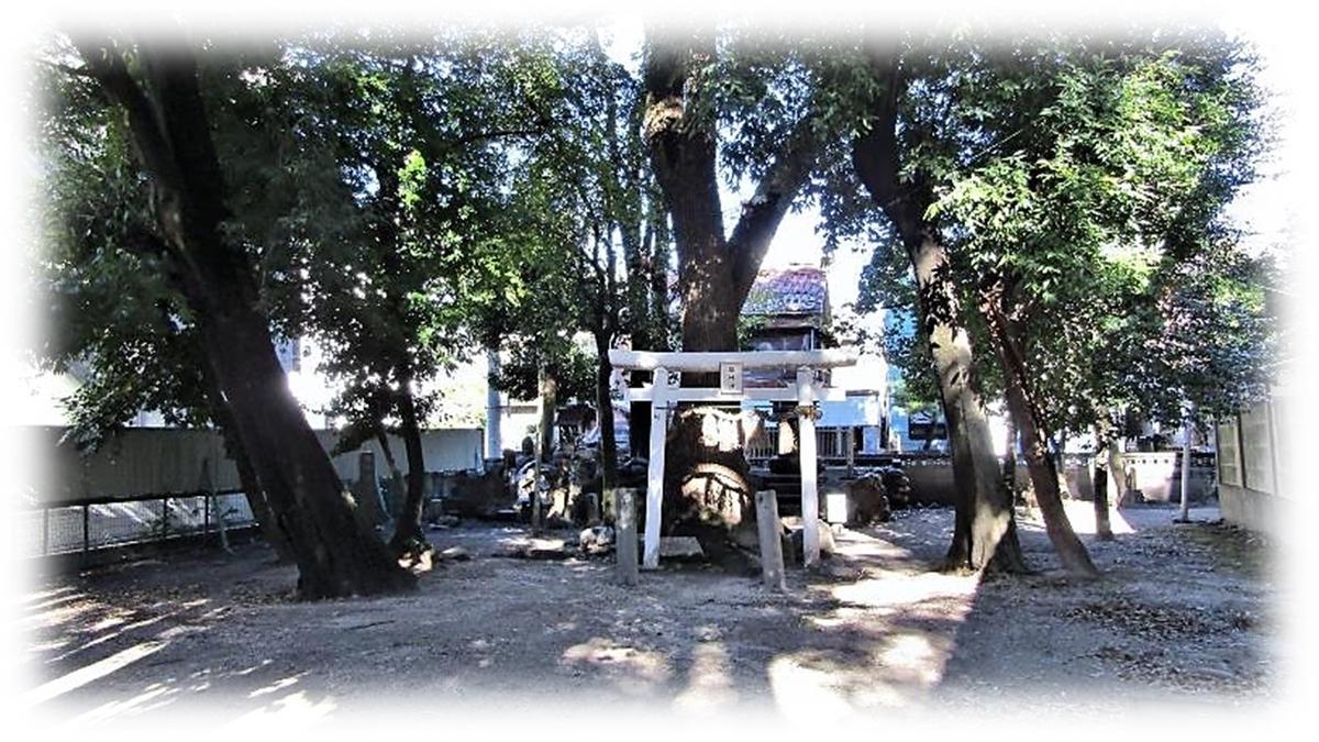 f:id:owari-nagoya55:20210102182225j:plain