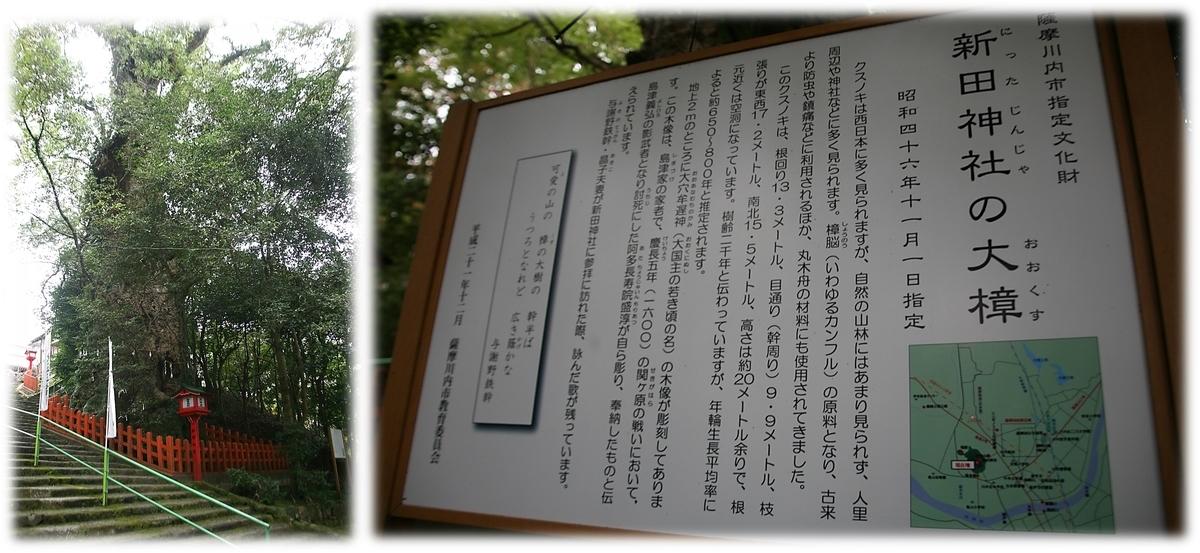 f:id:owari-nagoya55:20210125213243j:plain