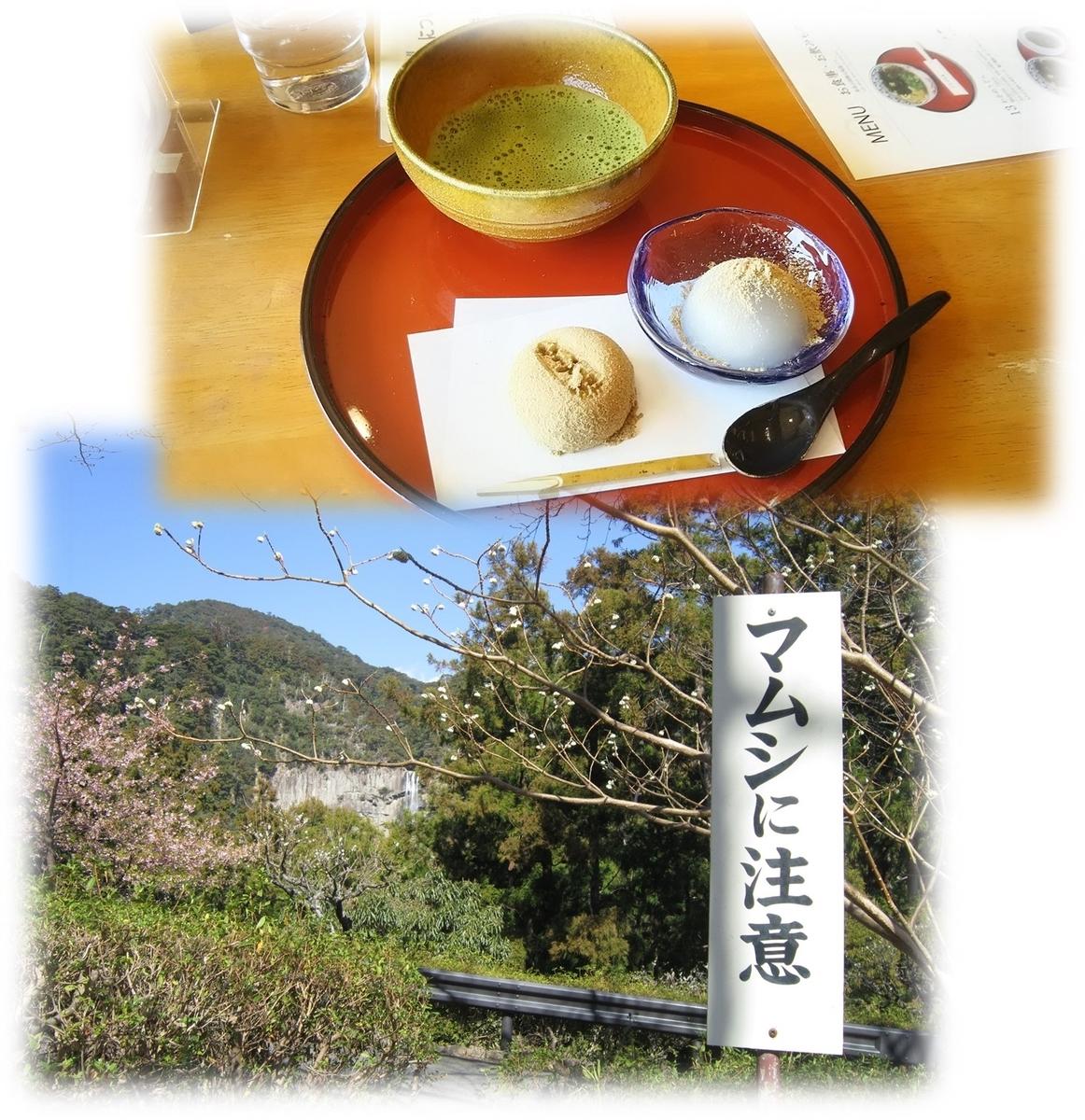 f:id:owari-nagoya55:20210224155402j:plain