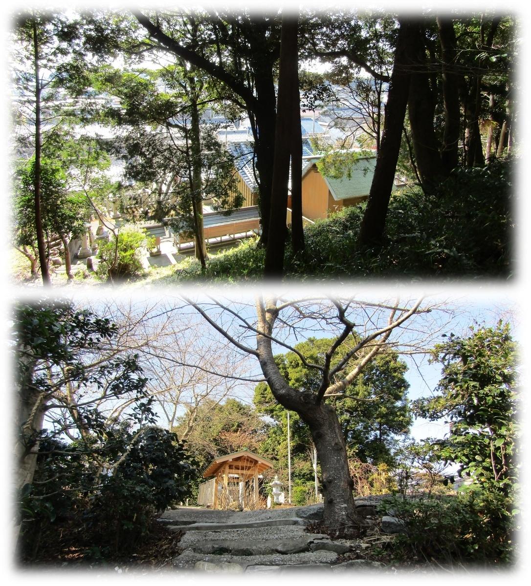 f:id:owari-nagoya55:20210313025058j:plain