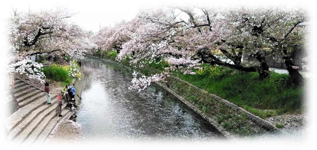 f:id:owari-nagoya55:20210405082310j:plain