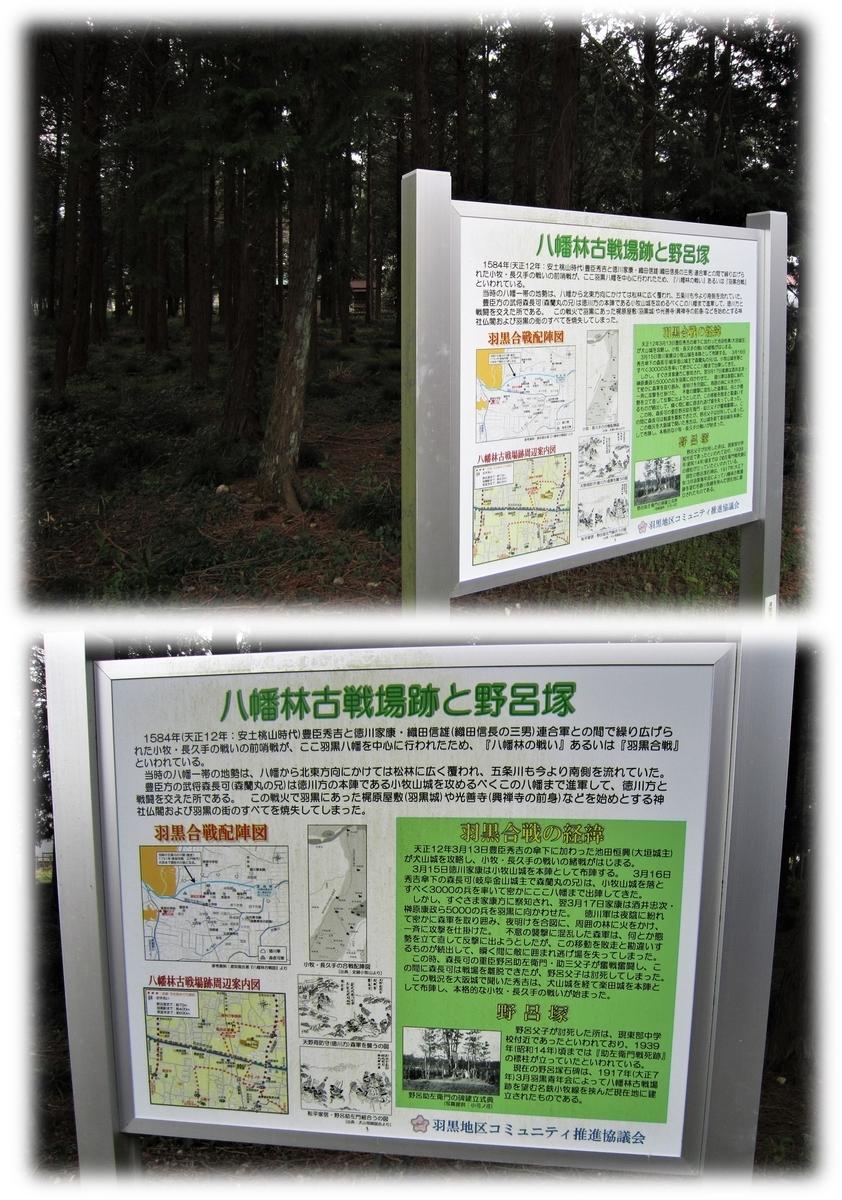 f:id:owari-nagoya55:20210405110339j:plain