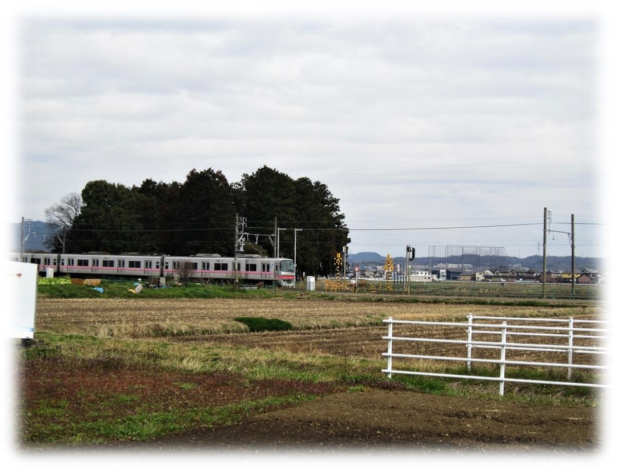 f:id:owari-nagoya55:20210412074157j:plain