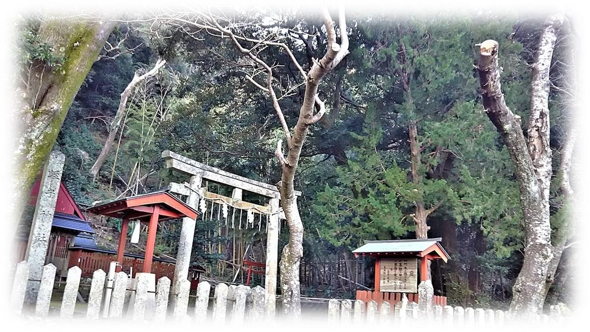 f:id:owari-nagoya55:20210501154827j:plain