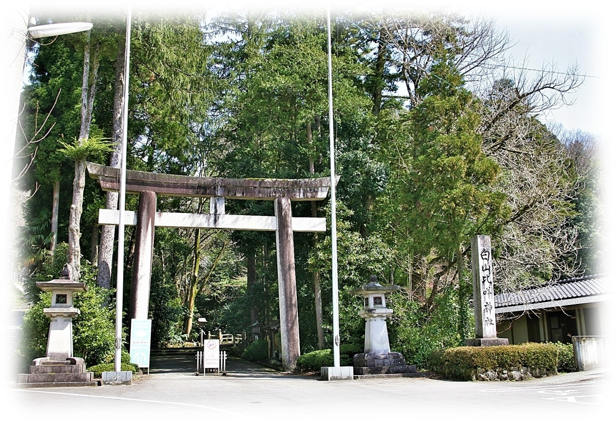 f:id:owari-nagoya55:20210701170621j:plain