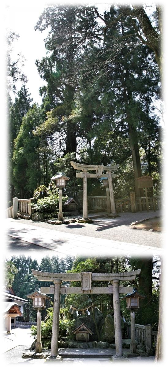 f:id:owari-nagoya55:20210701171147j:plain