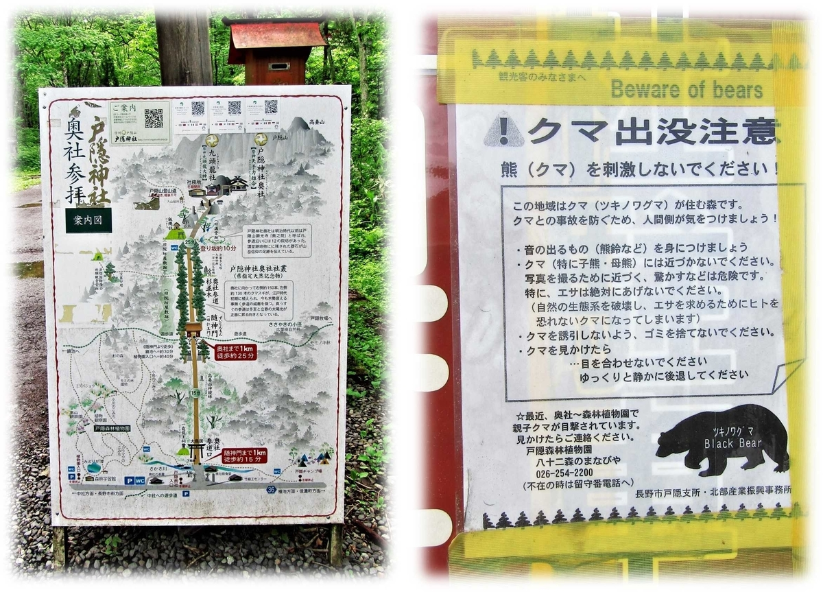 f:id:owari-nagoya55:20210724200815j:plain