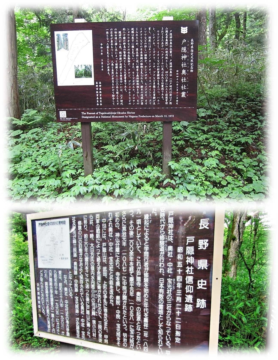 f:id:owari-nagoya55:20210724201045j:plain