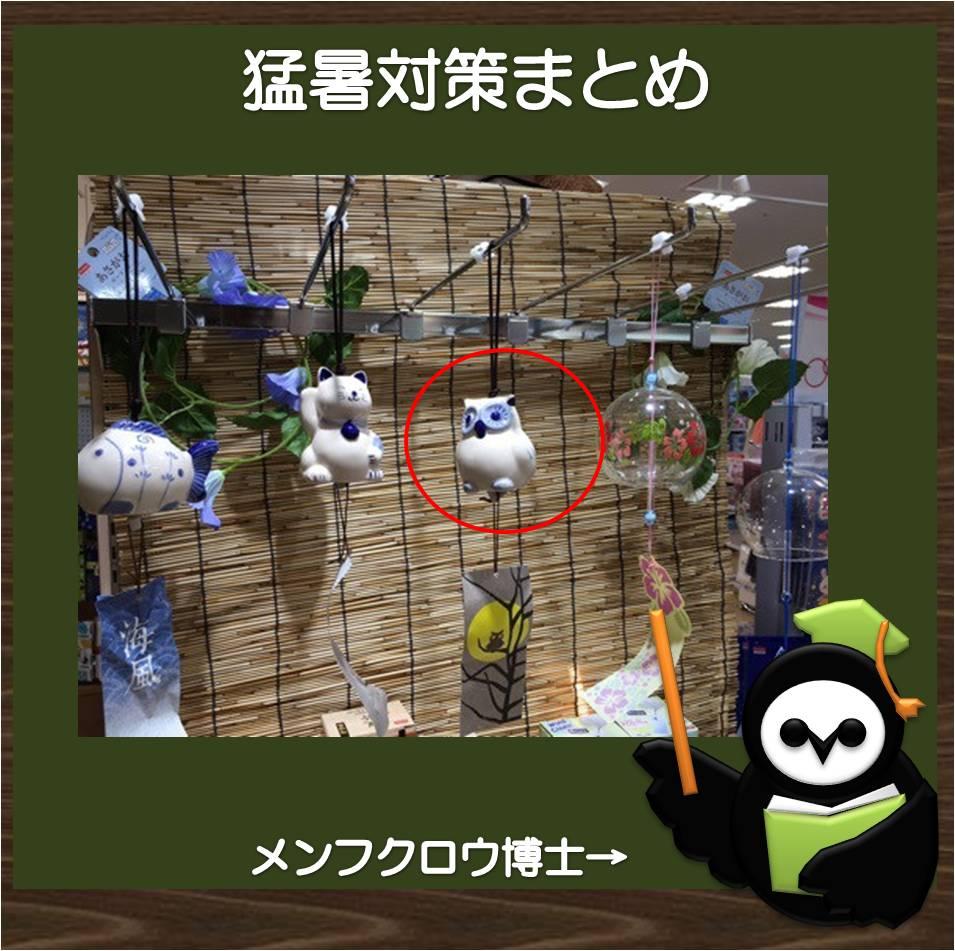f:id:owl296380:20180811224742j:plain