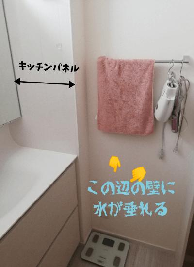 洗面台のキッチンパネル