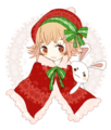 2010/12/26 クリスマスぽいの