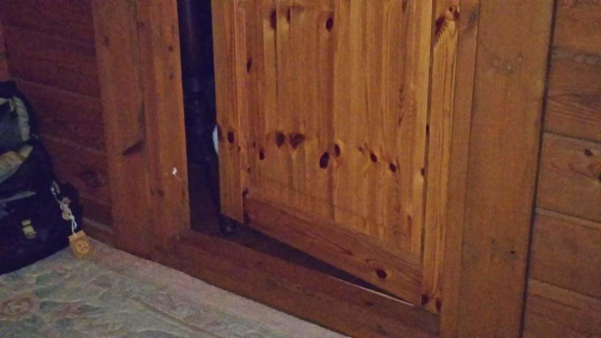 見つめる猫 こっそり 家政婦は見た
