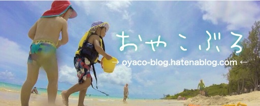 f:id:oyaco_blog:20161008031101j:image