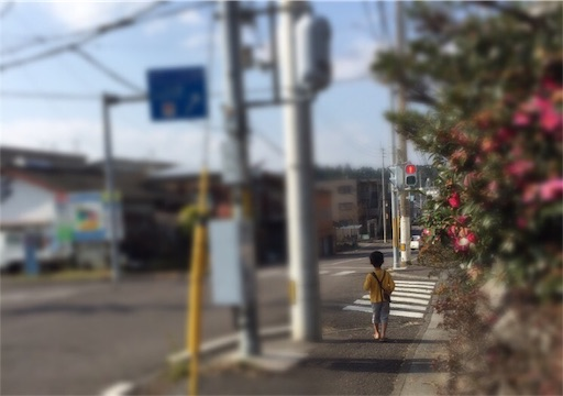 f:id:oyaco_blog:20170111181550j:image