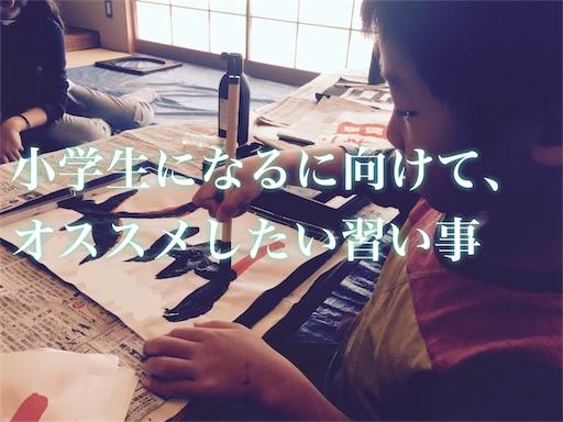 f:id:oyaco_blog:20170327172139j:image
