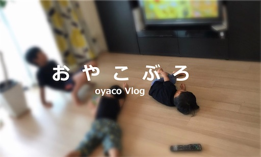f:id:oyaco_blog:20200315105408j:image
