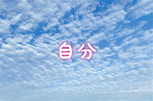 f:id:oyaco_blog:20201027144635j:image
