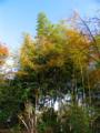 [2010百花園]