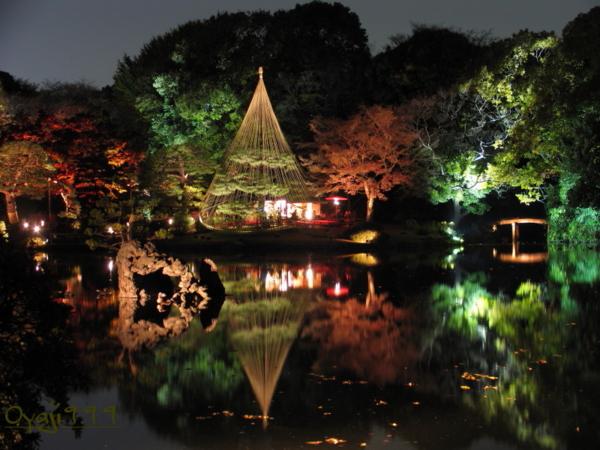 f:id:oyaji999:20101201183058j:image