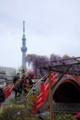 [2013亀戸天神 藤祭り]