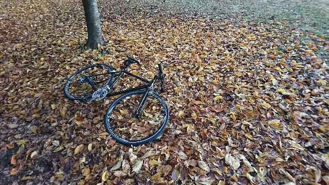 f:id:oyajicyclist:20191129073520j:image