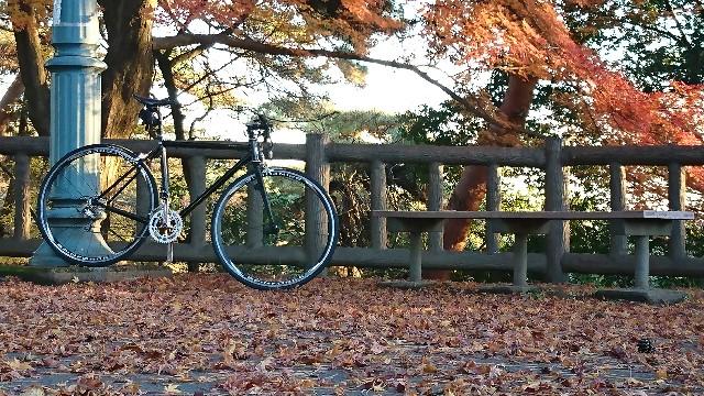 f:id:oyajicyclist:20191129073617j:image
