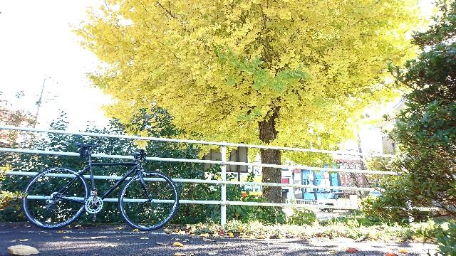 f:id:oyajicyclist:20191129101147j:image