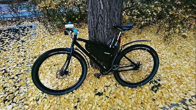 f:id:oyajicyclist:20191202173411j:image