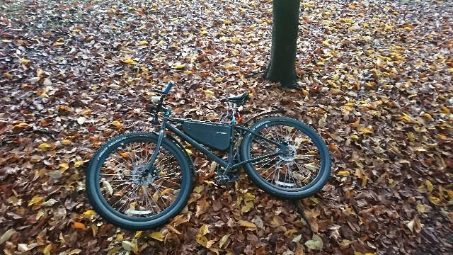 f:id:oyajicyclist:20191203064252j:image