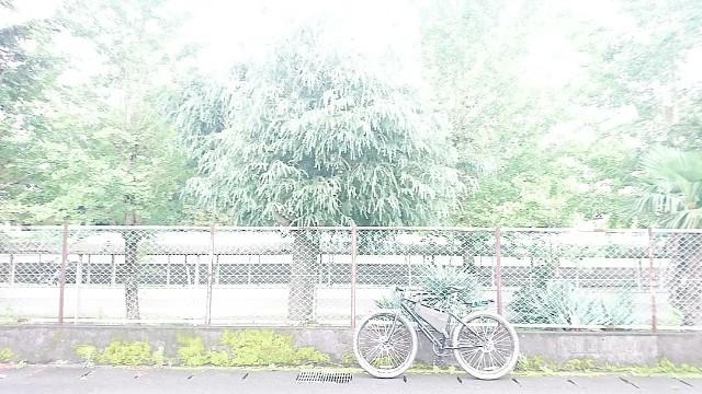 f:id:oyajicyclist:20200710065814j:image