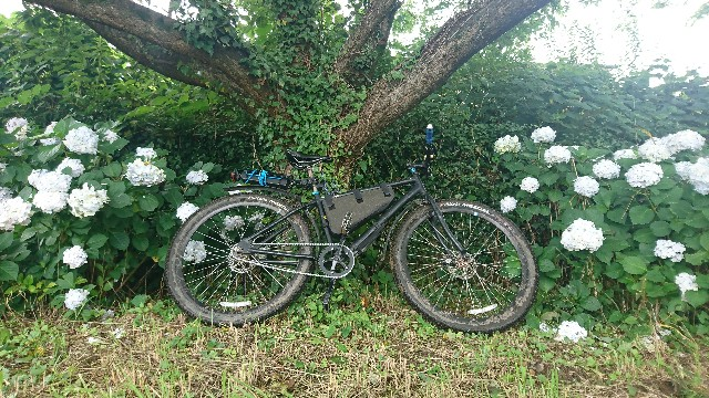 f:id:oyajicyclist:20200710150334j:image
