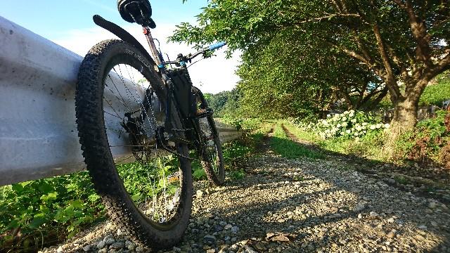 f:id:oyajicyclist:20200724065129j:image