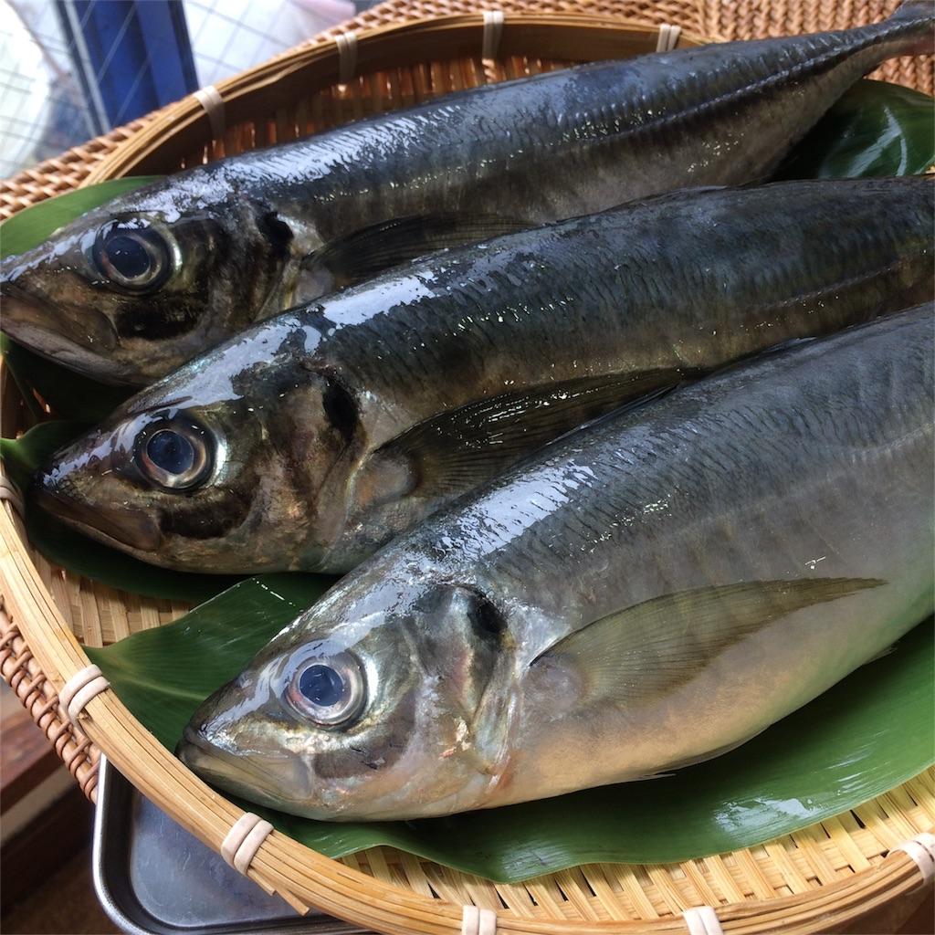 f:id:oyako-kitchen268:20170722182907j:image