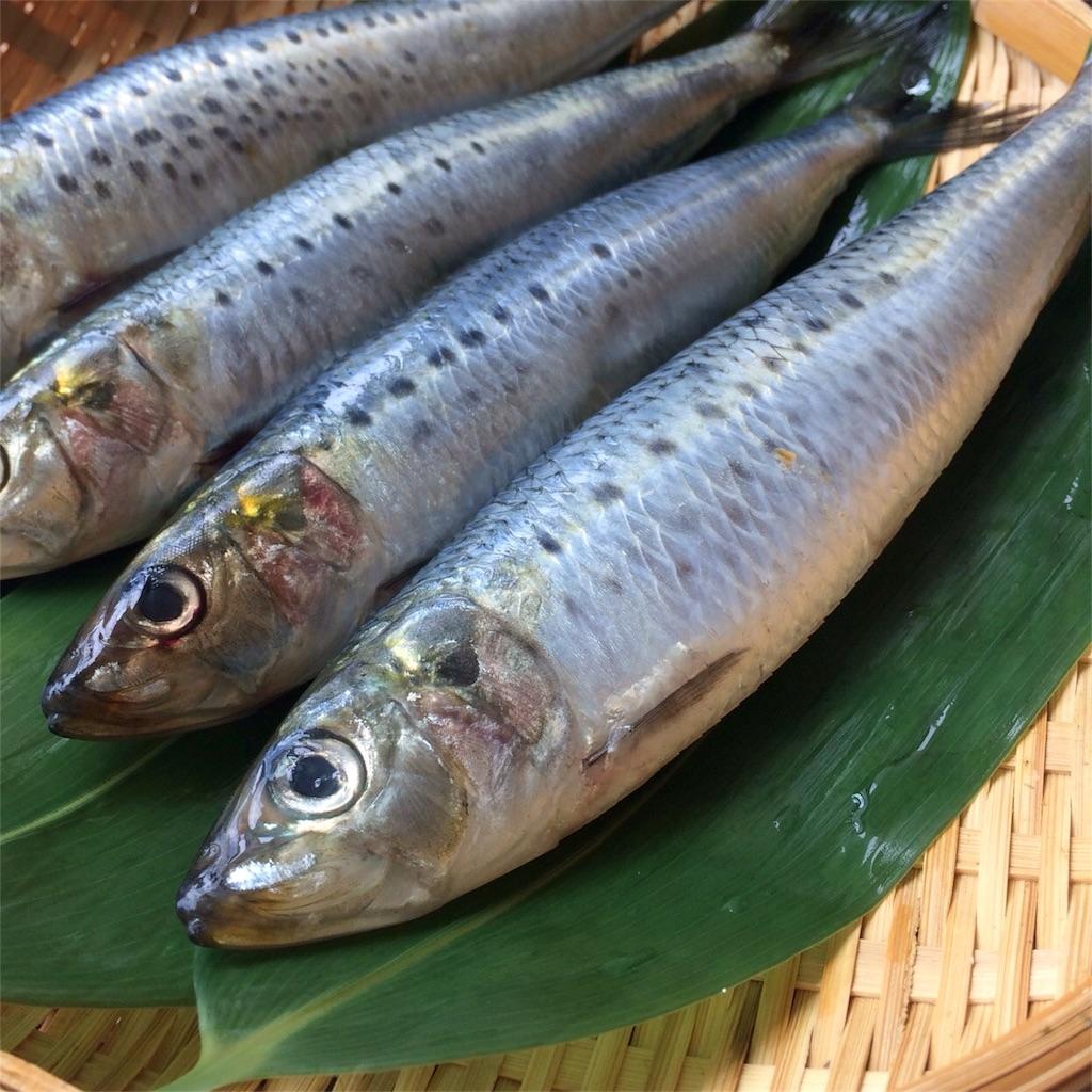 f:id:oyako-kitchen268:20170722200355j:image
