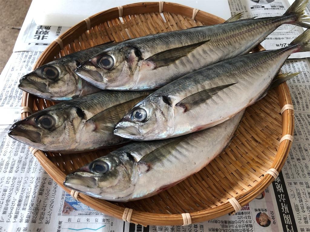 f:id:oyako-kitchen268:20191211154116j:image