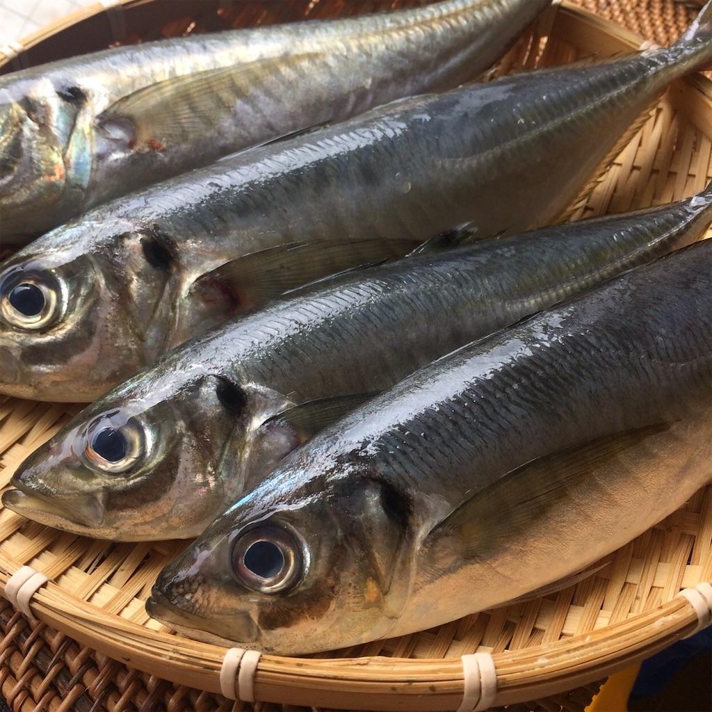 f:id:oyako-kitchen268:20200103212010j:image