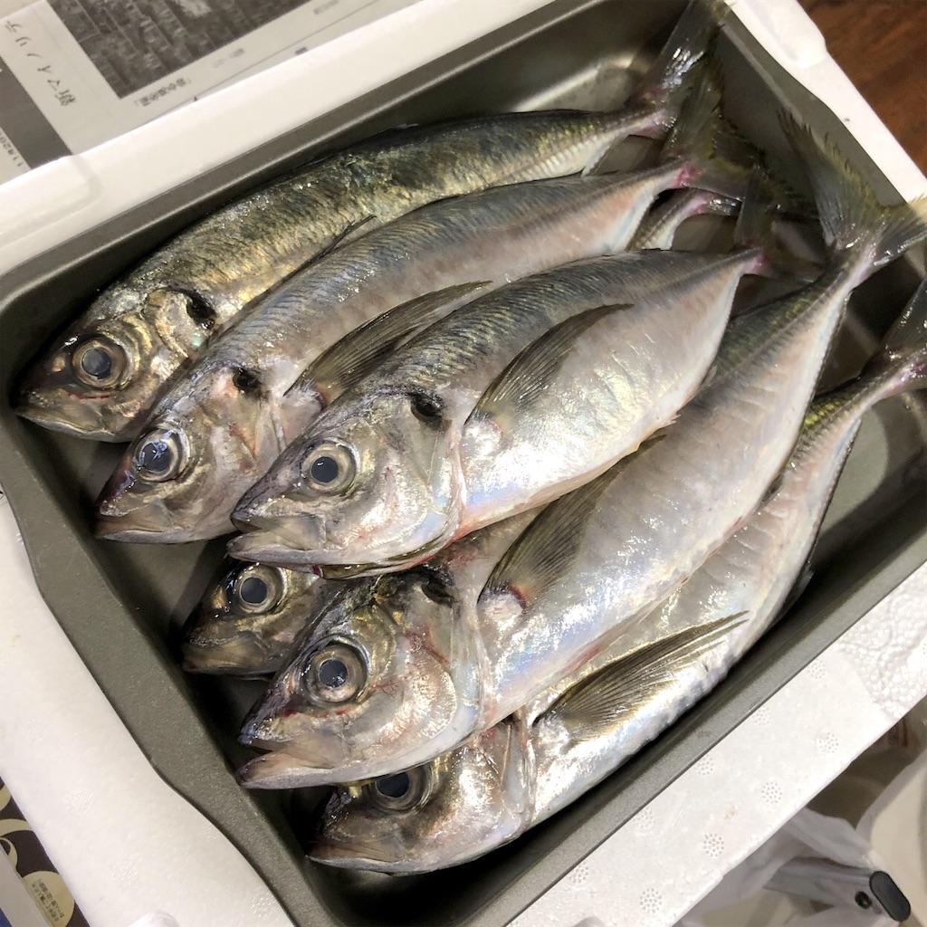 f:id:oyako-kitchen268:20210920102107j:image